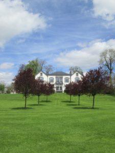Taille de formation indispensable pour éliminer les défauts d'arbres d'avenir